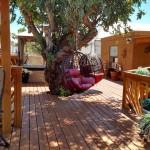 patio-deck-2